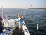 Fall topwater season for trophy stripers