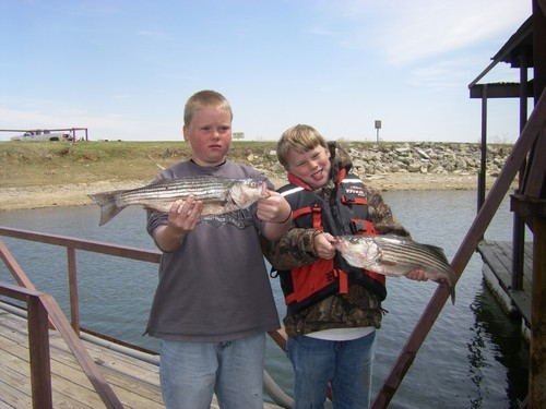 Stripers caught on Lake Texoma with Stripers Inc. guide, Brian Prichard