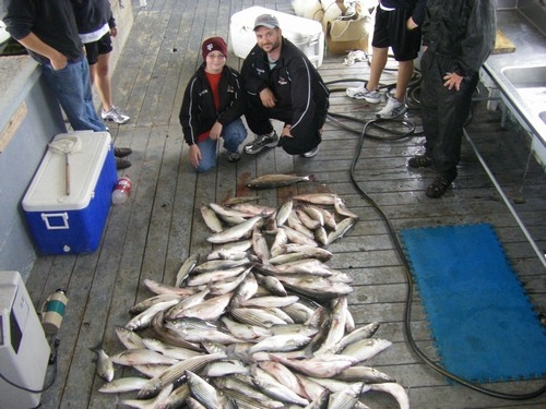 Stripers caught on Lake Texoma with Lake Texoma fishing guide Brian Prichard