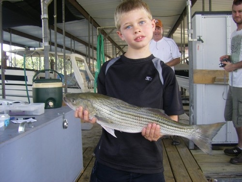 Stripers caught on Lake Texoma with fishing guide Brian Prichard