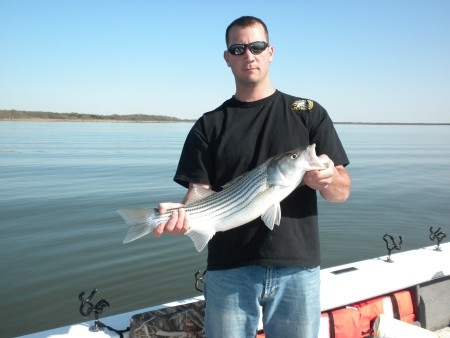 Stripers Caught on Lake Texoma with Stripers Inc Guide Brian Prichard
